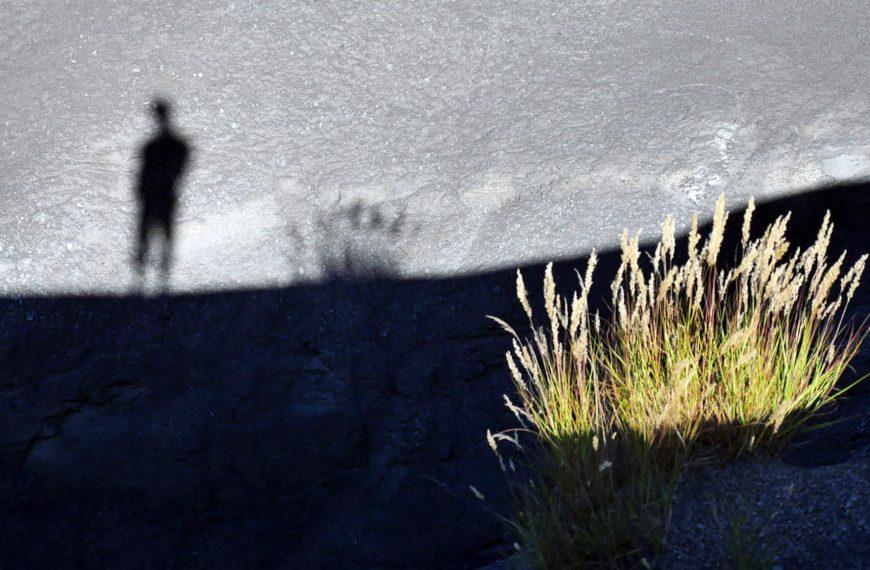 Face à mon ombre – la haine de soi
