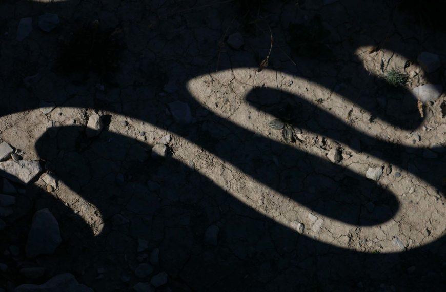 L'ego et son ombre